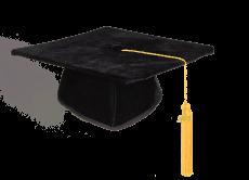 Graduation Cap Honoris in velvet